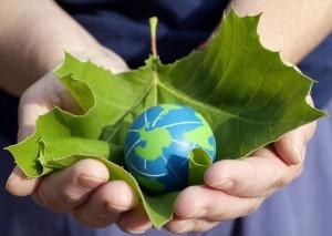 Congleton Sustainability Group
