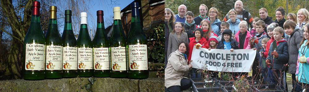 Apple juice project and congleton food for free