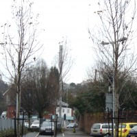 Pear Trees Back St Car Park