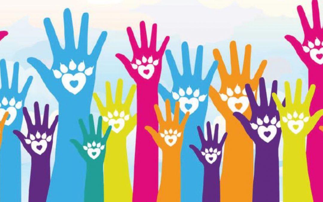 Congleton Community Wellbeing Fayre Raffle Winners.