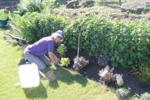 Cenotaph Planting
